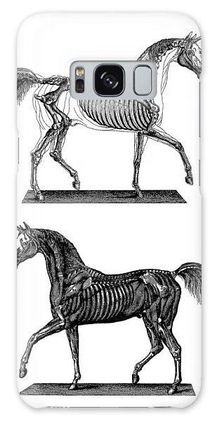 White Horse Galaxy S8 Case - Unicorn Anatomy by Madame Memento