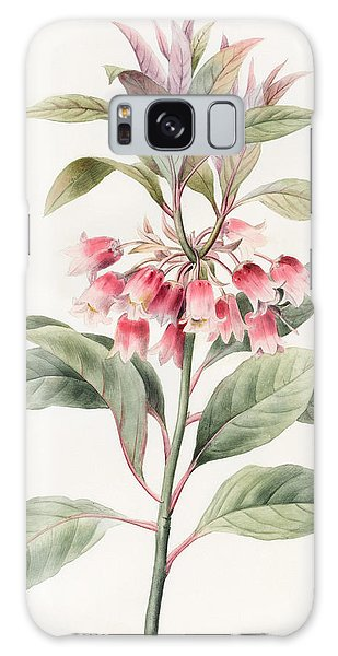 Plants Galaxy Case - Unnamed by Louise D'Orleans