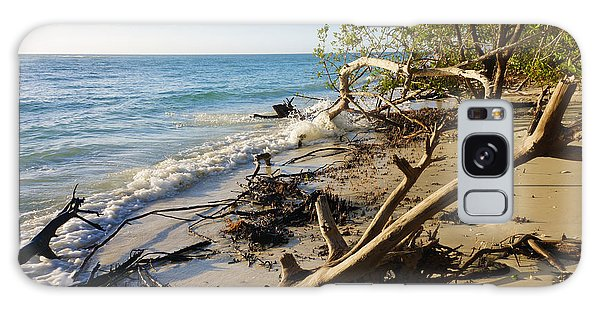 The Unspoiled Beaty Of Barefoot Beach Preserve In Naples, Fl Galaxy Case