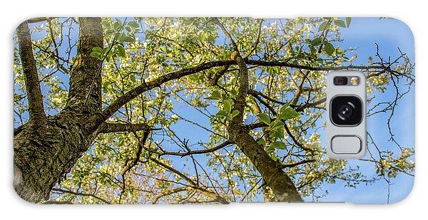 Up A Tree Galaxy Case