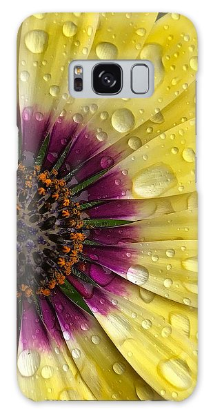 Daisy Up Close  Galaxy Case