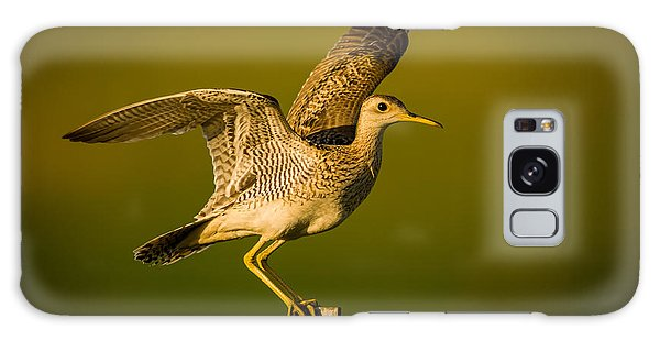 Upland Sandpiper On Steel Post Galaxy Case