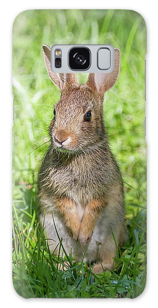 Galaxy Case featuring the photograph Upright Rabbit by Chris Scroggins