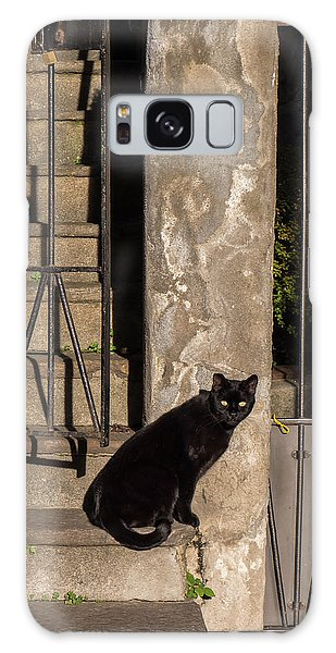 Urban Cat Galaxy Case