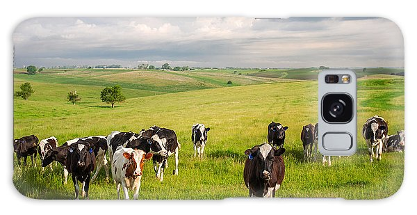 Valley Of The Cows Galaxy Case