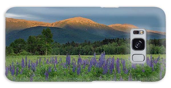 Valley Way Lupine Sunset Galaxy Case