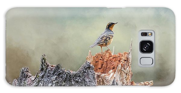 Varied Thrush On A Dead Tree Galaxy Case