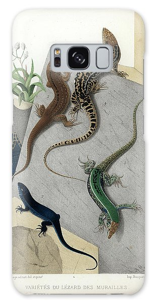 Varieties Of Wall Lizard Galaxy Case by Jacques von Bedriaga