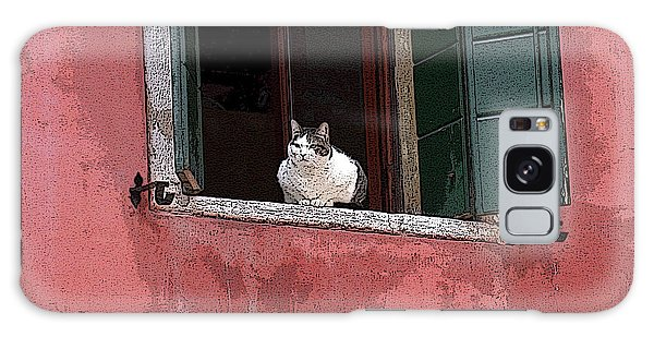 Venetian Cat In Window Galaxy Case
