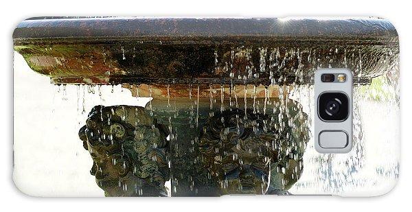 Versailles Fountain Galaxy Case