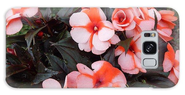 Plumerias Vibrant Pink Flowers Galaxy Case