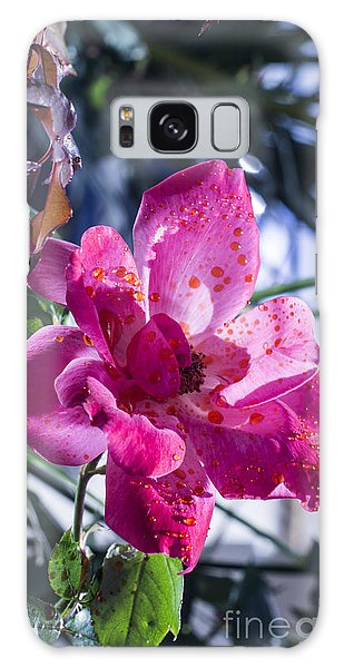 Vibrant Pink Rose Galaxy Case