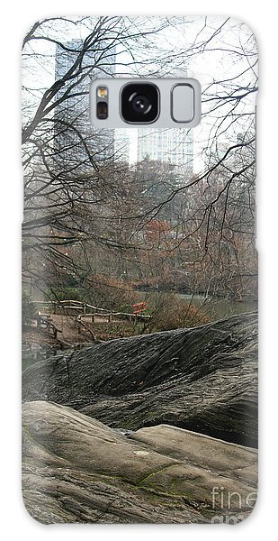View From Rocks Galaxy Case by Sandy Moulder