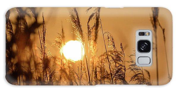 View Of Sun Setting Behind Long Grass B Galaxy Case