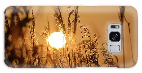 View Of Sun Setting Behind Long Grass B Galaxy Case