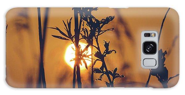 View Of Sun Setting Behind Long Grass D Galaxy Case