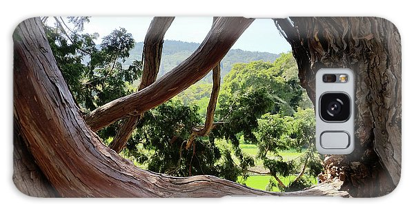View Through The Tree Galaxy Case by Carol Lynn Coronios
