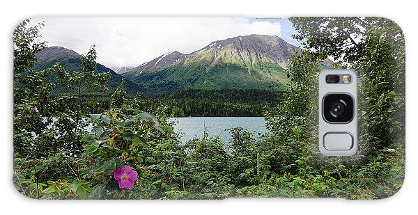 Views In Alaska Galaxy Case
