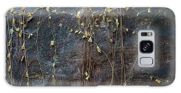 Galaxy Case featuring the photograph Vines On Rock, Bhimbetka, 2016 by Hitendra SINKAR