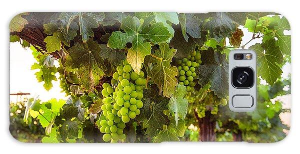 Vineyard 3 Galaxy Case