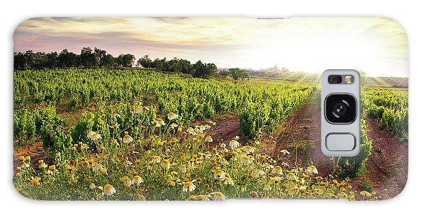 Vineyard Galaxy Case