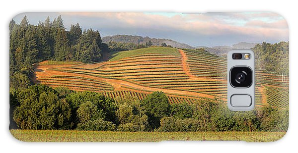 Vineyard In Dry Creek Valley, Sonoma County, California Galaxy Case