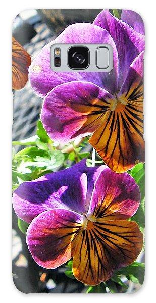 Violas Galaxy Case