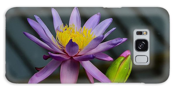 Violet And Yellow Water Lily Flower With Unopened Bud Galaxy Case