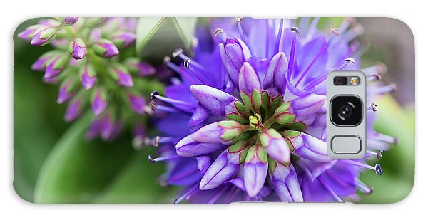 Violet Burst Galaxy Case