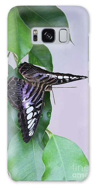 Violet Clipper Butterfly V2 Galaxy Case