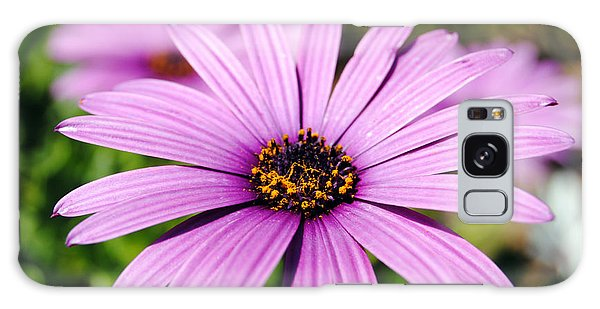 The African Daisy 1 Galaxy Case