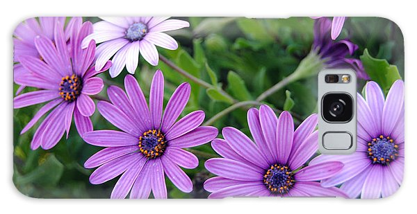 The African Daisy Flowers Galaxy Case