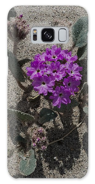 Violets In The Sand Galaxy Case