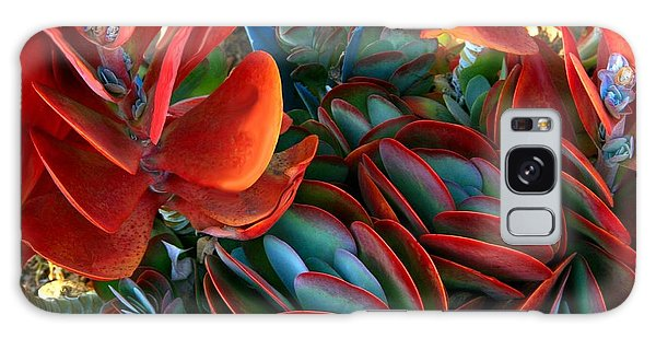 Vivid Paddle-leaf Succulent Galaxy Case