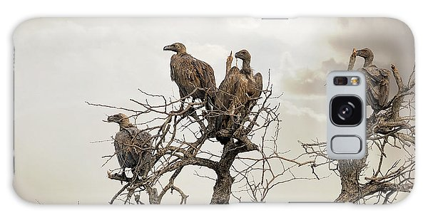 Vultures In A Dead Tree.  Galaxy Case