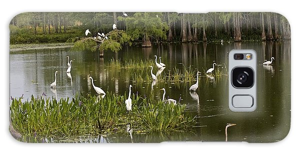 Wading Birds Galaxy Case