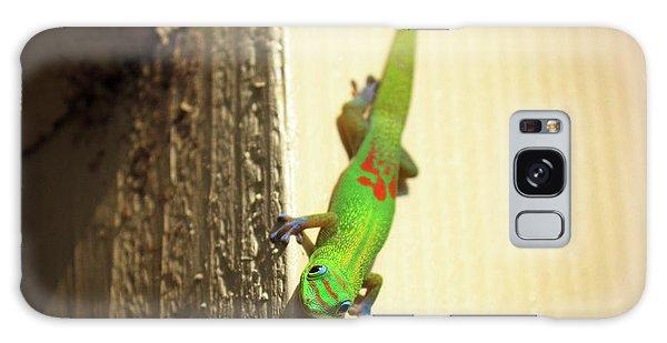 Waimea Gecko Galaxy Case