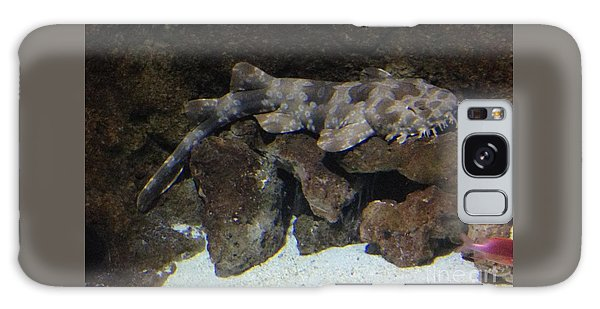 Waiting To Eat You - Spotted Wobbegong Shark Galaxy Case by Richard W Linford