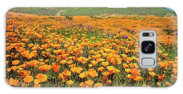 Walker Canyon Wildflowers Galaxy Case