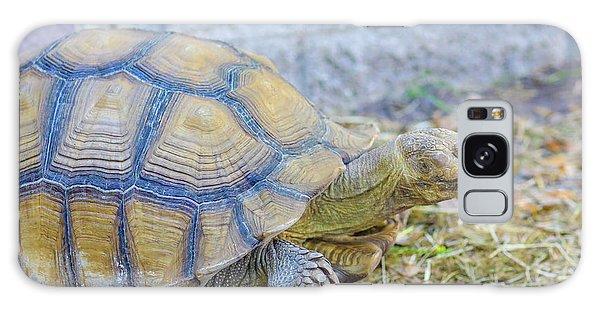 Walking Turtle Galaxy Case