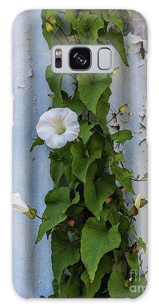 Wall Flower Galaxy Case
