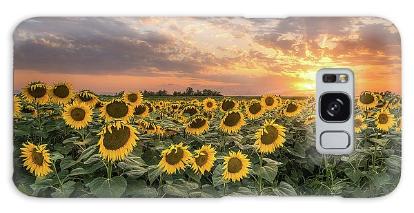 Wall Of Sunflowers Galaxy Case