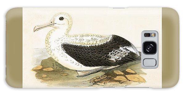Albatross Galaxy Case - Wandering Albatross by English School