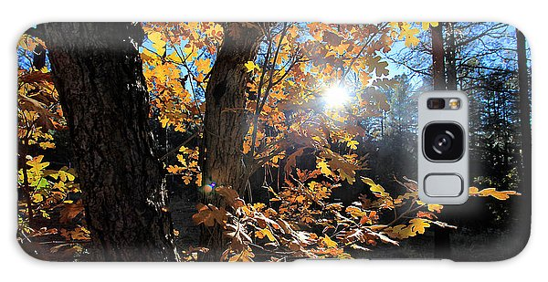 Waning Autumn Galaxy Case by Gary Kaylor