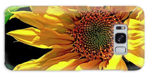 Warm Welcoming Sunflower Galaxy Case