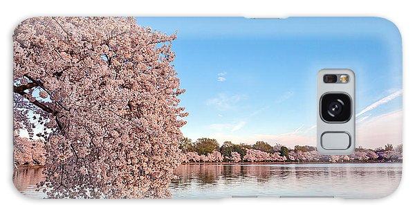 Washington Dc Cherry Blossoms Galaxy Case by Nicolas Raymond