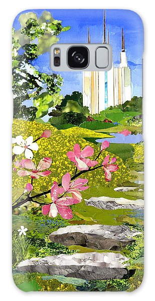 Stone Galaxy Case - Washington Dc Temple by Robin Birrell