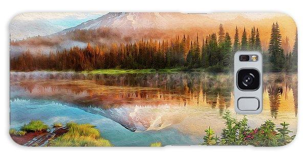 Washington, Mt Rainier National Park - 04 Galaxy Case