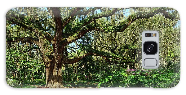 Washington Oaks Gardens Galaxy Case