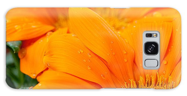Galaxy Case - Water Droplets On Orange Daisy by Iordanis Pallikaras